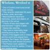 Pub in a picture: Whelans