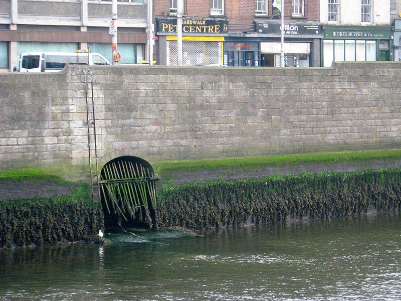 The river poddle as it meets the Liffey.