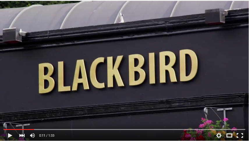blackbirdscreencap