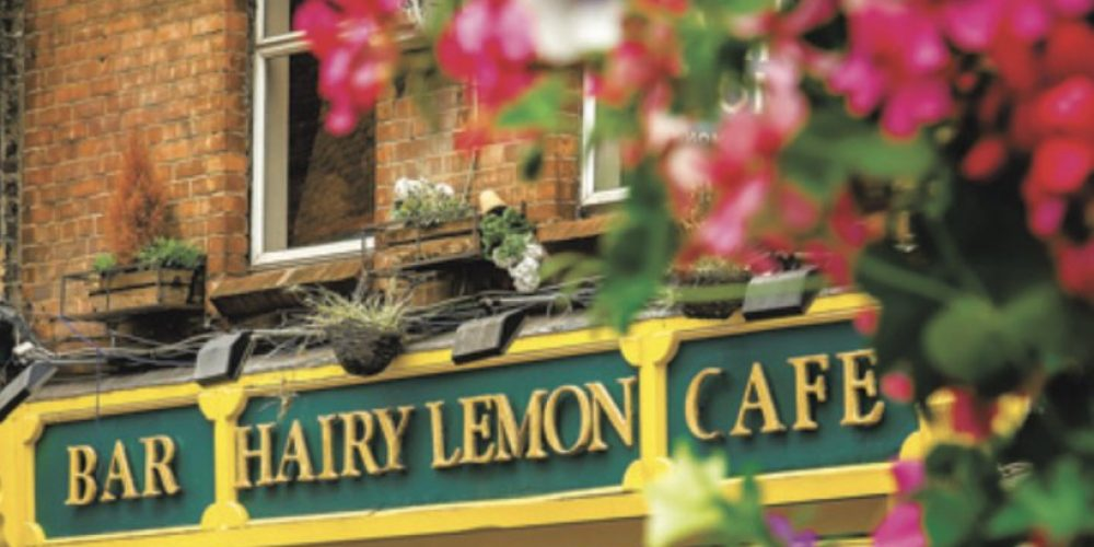 The Hairy Lemon now has their own cookbook.