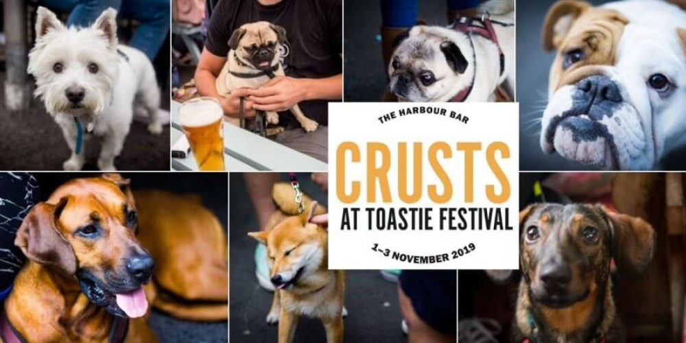 There's a dog show at this pubs toastie festival. It's called 'Crusts'.